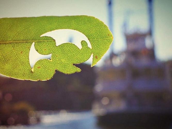 ディズニーランドの隠れミッキーを写真つきヒントでご紹介!