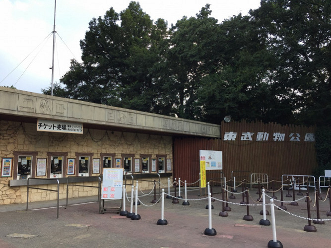 【東武動物公園】車で行くなら西ゲート!駐車場・動物園・プールへの行き方&ポイント