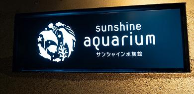 サンシャイン水族館の入場料金はいくら?当日券&割引サービスまとめ!年パスの特典も!