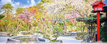 【実体験】大江戸温泉物語のおすすめ楽しみ方プラン!江戸の縁日を満喫!お台場と浦安万華郷の違いは?