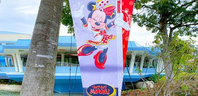 【ボンファイアーダンス】「ベリー・ベリー・ミニー!」を楽しむ前に知っておきたい歴代ショー!
