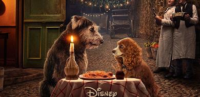 【Disney+】実写版『わんわん物語』あらすじ&見どころ紹介!オリジナルアニメとの違いも!