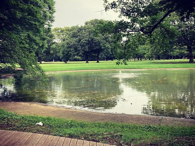 代々木公園デートの楽しみ方!イベントやピクニック、サイクリングを楽しもう♪