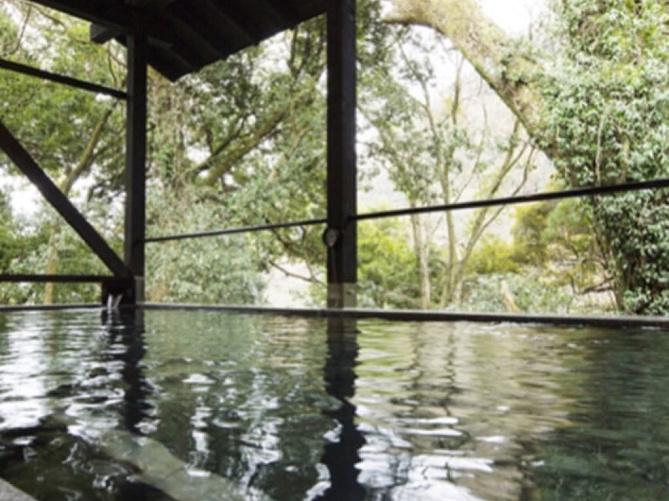 【箱根】日帰り温泉おすすめプランまとめ!カップル・親子・女子旅で箱根旅行を満喫しよう