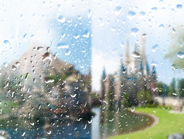 雨の日ディズニー楽しみ方
