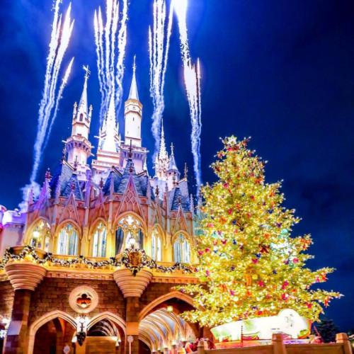【2019】ディズニークリスマスツリーまとめ!ディズニーランド・シー・ホテルのデコレーションも!