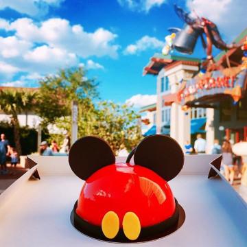【ディズニーワールド】フロリダで世界最大級の感動を!4パークと2つのウォーター・パークを徹底解説!